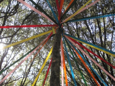 May Day Tree Pole