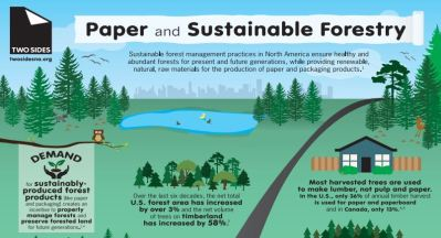 Paper Infographic